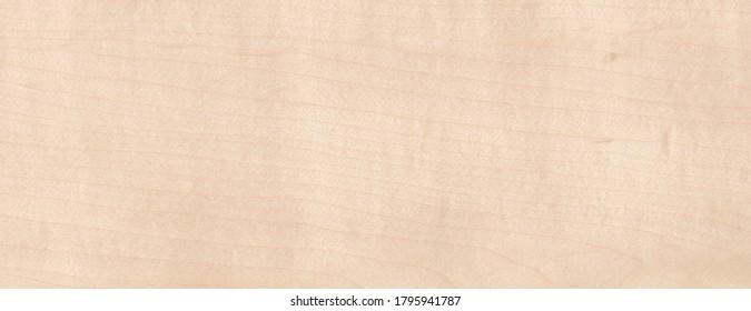 Maple Wood Grain texture Wooden background
