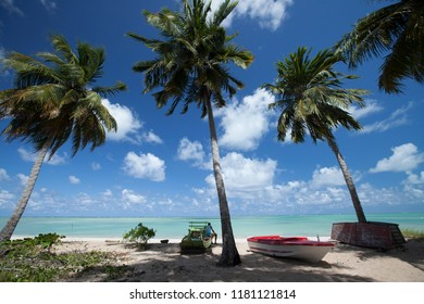 Maragogi, Alagoas / Brazil - 09/13/2015: Artisanal fishing boats on Antunes Beach