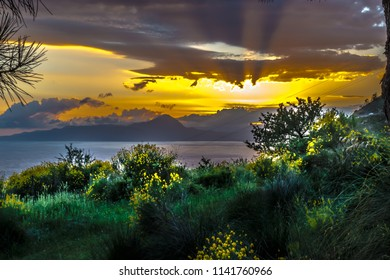 Maratea, Potenza, Basilicata, Italy - A wonderful sunset on in the bay of Maratea and yellow flowering broom in June.