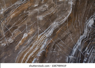 Marble material or wood texture of cut tree trunk for background, stone surface, granite, limestone Abstract texture for design and interior. Floor decorative. Close-up
