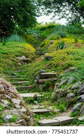 A marble stone stairs in the botanic garden. Covered with green plants and grass. With many flower everywhere.