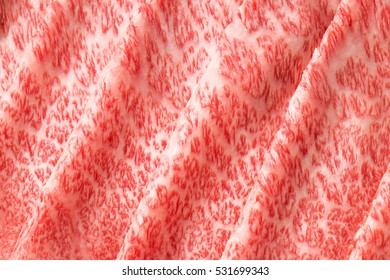 Marbled Japanese beef of the highest grade