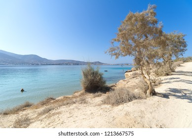 Marcello beach - Cyclades island - Paroikia (Parikia) Paros - Greece