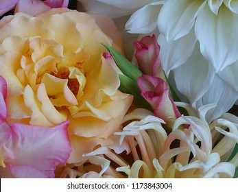 Marco Photography, beautiful bouquet Flowerpower Pink yellow white green