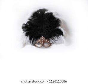 Mardi Gras masquerade masks man and woman on black and white background isolated for poster or design