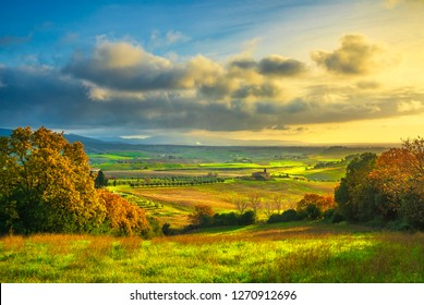 Maremma countryside, sunset landscape. Green fields in Bibbona and Casale Marittimo. Tuscany, Italy, Europe.