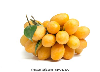 Marian Plum is a bunch on a white background,