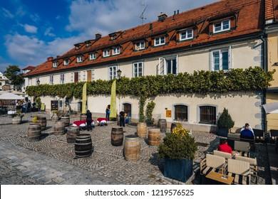 Maribor, Slovenia, September 28. The oldest vine in the world, Stara Trta from Maribor, Pohorje, Slovenia. Old wine plant in Styria, Slovenia, Maribor.