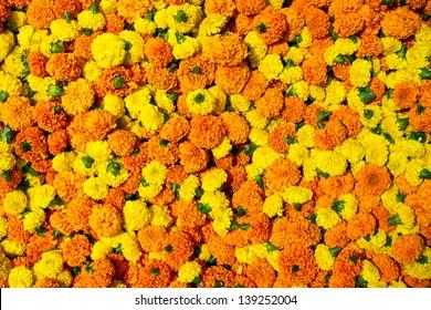 Marigold flowers garland background
