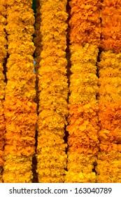 Marigold offering