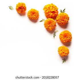 Marigold yellow flowers isolated on white background, creative flat lay, copy space. Chinese mid autumn festival concept with marigolds.