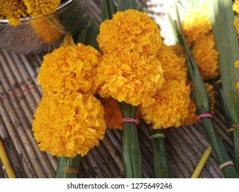 Marigold's Rice offerring become for Holy thing, that give the peple for grow and success in living