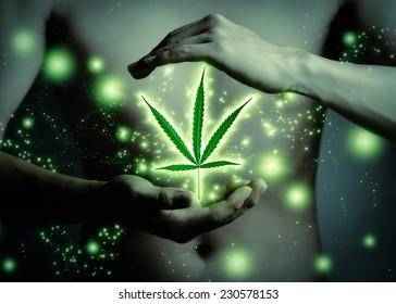 Marijuana background. Legalize marijuana, Medical marijuana concept. Cannabis leaf floating and shining in hand.