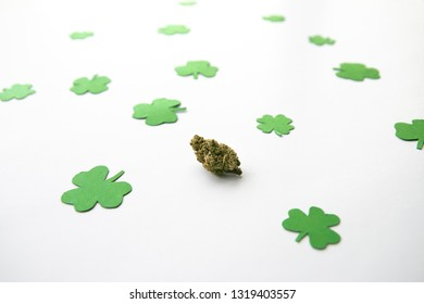 Marijuana Bud against Four and Three Leaf Clovers St Patricks St Pattys Day - High Angle, Centered