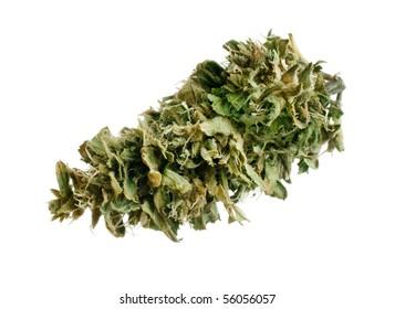 Marijuana bud, freshly manicured.