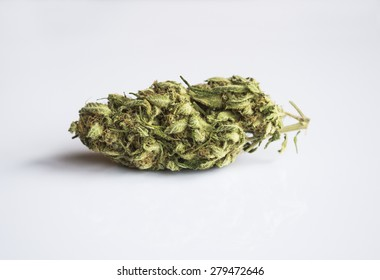 Marijuana bud isolated on clear background