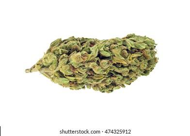 Marijuana bud, isolated on white background