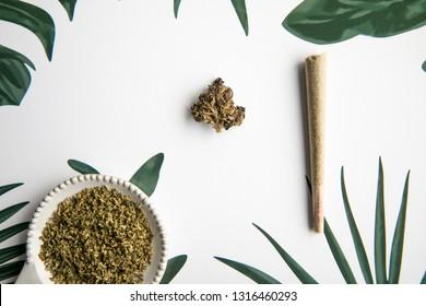 Marijuana Bud and Joint Sit on Tropical Foliage Background - Minimalist Cannabis