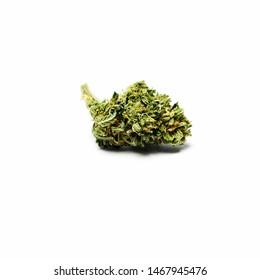 Marijuana Bud on a White Background