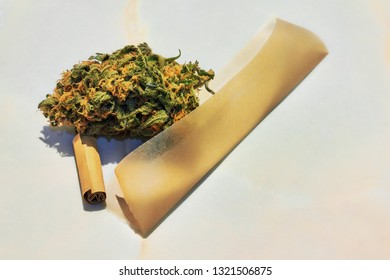 Marijuana bud and rolling paper. Cannabis bud into joint. Preparing a medical cannabis joint with tobacco and rolling paper.