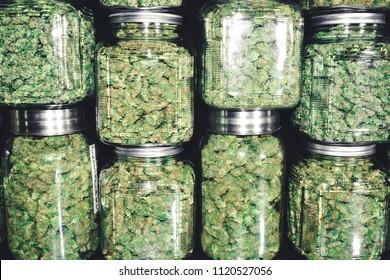 Des buissons de marijuana dans la pile de bocal de verre