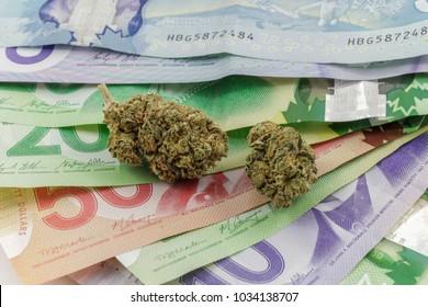 Marijuana Buds on Canadian money