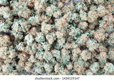 Marijuana buds texture Or background