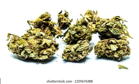 Marijuana and Cannabis Bud