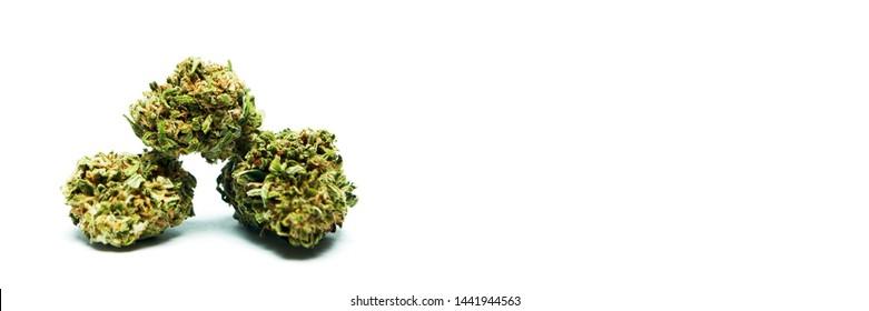Marijuana and Cannabis Bud on White Background.