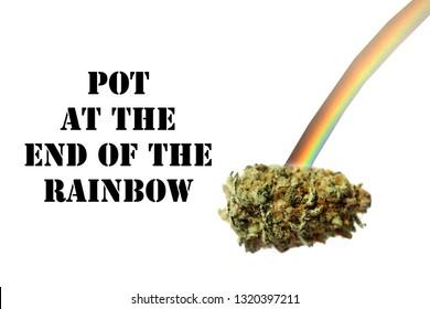 Marijuana. Marijuana or Cannabis Bud with a Rainbow. Isolated on white. Room for text. Pot at the end of the rainbow.