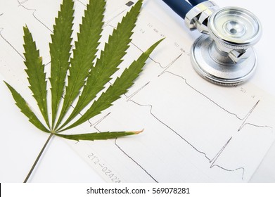 Marijuana or cannabis and heart rate. Green leaf of medical marijuana is on printed wave of ECG heart rate near blue stethoscope for listening heart. Influence and effects of cannabis on human heart