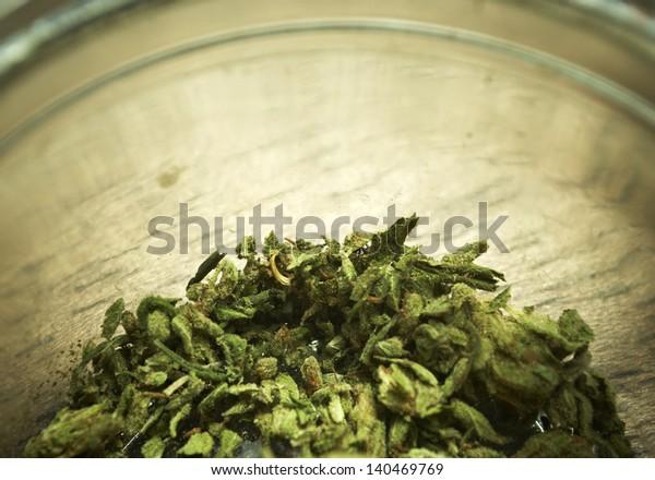 Marijuana or cannabis in a jar