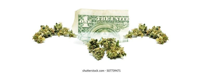 Marijuana and Cannabis, Panoramic