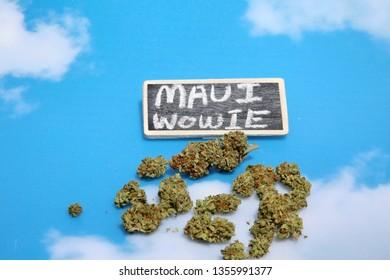 Marijuana. Cannabis. Recreational and Medical Marijuana Buds. Blue sky background with a small chalk board sign. Room for text. Maui Wowie Sativa Strain.