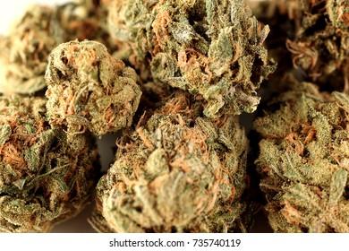Marijuana DOUBLE DREAM