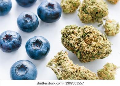 Marijuana Kush Trimmed Flower Buds & Fresh Organic Blueberries Up Close