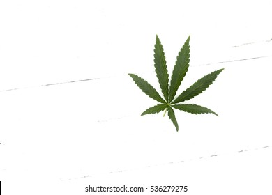 Marijuana leaf on a white background, a wooden table top