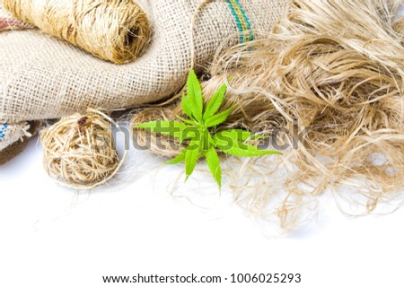 Marijuana Leafs Cannabis Hemp Fibers Isolated Stock Photo Edit Now