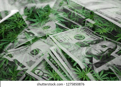 Marijuana Leaves With Money Representing The Cannabis Industry