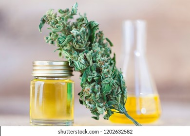 marijuana medical cannabis oil cbd