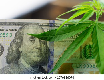 Marijuana and money. Leaves of marijuana and dollars.