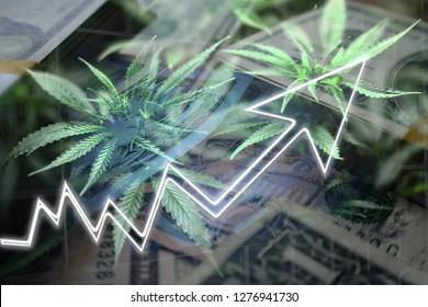 Images, photos et images vectorielles de stock de Marijuana