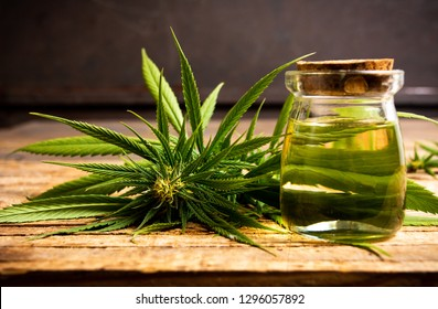 Marijuana plant with buds and essential oil on a wooden table