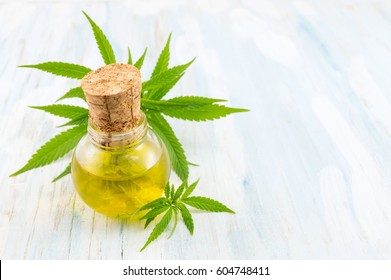 marijuana plant and cannabis oil on wooden table