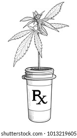 Marijuana plant growing in a pill bottle as if prescribed by a doctor and given out at a pharmacy.