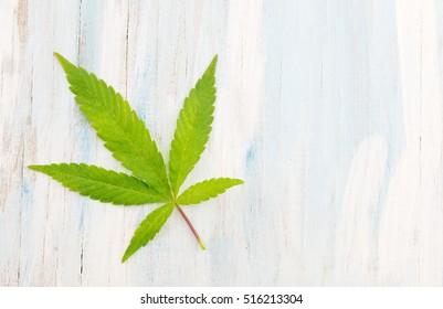marijuana plant on bright wooden background