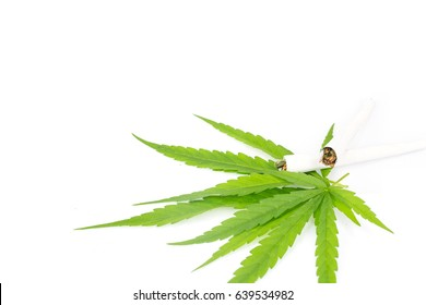 Marijuana rolls isolated on white background