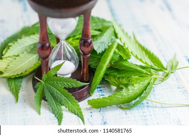 Marijuana and time. Leaves of marijuana and an hourglass on a wooden background.