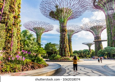 MARINA BAY, SINGAPORE -March 23, 2018: A woman taking a photo of the colourful Supertree Grove at Gardens by the Bay with other visitors in the background