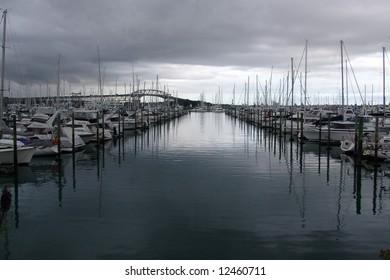 marina lines
